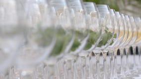 Glazen Wijn met Munt stock footage