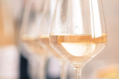 Glazen witte wijn Stock Afbeelding