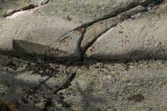 Glazial- Nut im Granitgrundgestein, Mt Kearsarge, New Hampshire Stockfoto