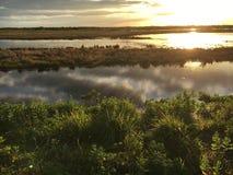Glazig water in de lagune Stock Foto