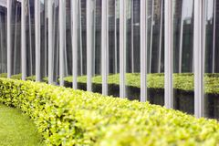 Glazing of the Building by the Garden. royalty free stock image