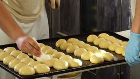 Smearing buns with glaze. Glazing buns. Buns on the baking tray are greased with oil. Before baking them on fire, you need to coat them with sunflower oil with stock footage