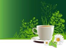 GLB van thee. royalty-vrije illustratie