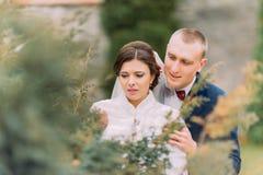 Glückliche Jungvermähltenpaare, elegante Braut und liebevoller Bräutigam, am Hochzeitsweg auf dem schönen grünen Park Stockfotos