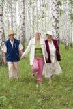Glückliche Ältere Lizenzfreies Stockfoto