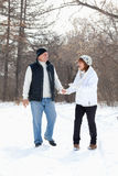 Glückliche Älterpaare, die in Winterpark gehen Stockfotografie