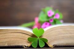 Glückliche Mutter-Tageskarte: Blumen mit Herzen formten Blatt auf dem geöffneten Buch Stockfotos