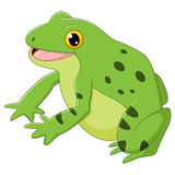 Glücklicher Frosch der Karikatur Stockbild
