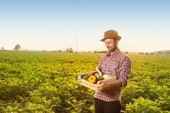 Glücklicher Landwirt mit Gemüse vor Weidelandschaft Stockfotos