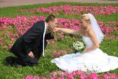Glückliches geheiratet Stockfoto