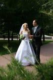 Glückliches geheiratet Lizenzfreie Stockfotografie