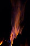 Gleam flame on  black background. Orange violet fire flames on  black background Royalty Free Stock Photography