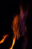 Gleam flame on  black background. Orange violet fire flames on  black background Stock Images