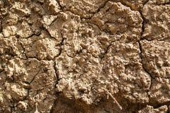Glebowa ściana Zdjęcia Stock