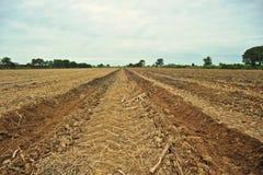 Glebowa kultywacja dla rolniczych upraw Fotografia Stock