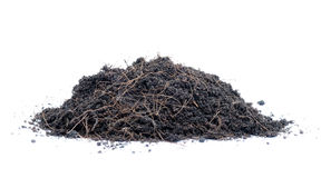 Glebowa mieszanka dla zasadzać drzewa zdjęcie royalty free