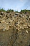 Glebowy profil fotografia stock