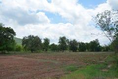 Glebowy przygotowanie Obrazy Stock