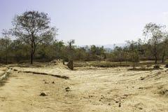 Glebowy słup Cudowny Obraz Stock