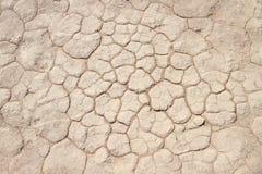 Glebowy szczegół sucha niecka, Sossusvlei, Namib pustynia Fotografia Royalty Free