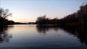 Gleitschirm mit einem Bewegungsnachtflug über dem See in Gatchina-Park, die Enten und die Seemöwen erschreckend stock video
