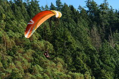 Gleitschirmfliegen an Punkt Poo Poo im Gebirgstiger, Issaquah, Washington, US Stockfotografie