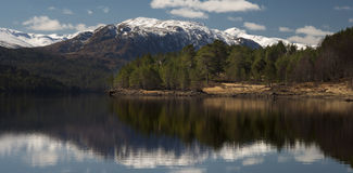 Glen Affric Images stock