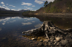 Glen Affric Photo stock