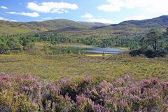 Glen Affric Photo libre de droits