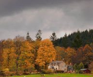 Glen Affric in autumn  Royalty Free Stock Image