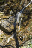 Glen Burney Trail, Blowing Rock, NC Royalty Free Stock Photography