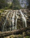 Glen Burney Trail, roca que sopla, NC Fotografía de archivo libre de regalías