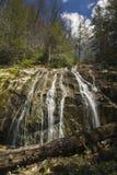 Glen Burney Trail, roche de soufflement, OR Image libre de droits
