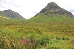 Glen Coe Scotland Royalty Free Stock Photo