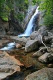 Glen Ellis Falls Royalty Free Stock Image