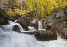 Glen Ellis Falls in the Foliage Royalty Free Stock Photography