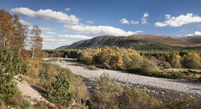 Glen Feshie en las montañas escocesas Fotografía de archivo libre de regalías