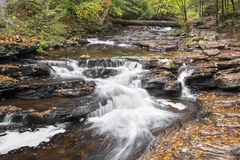 Glen Leigh at Ricketts Glen Stock Image