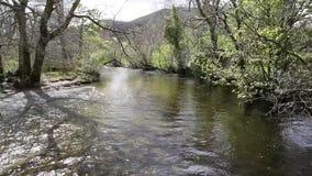 Glen Luss river Scotland uk near Loch Lomond UK Scottish tourist attraction stock video