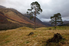 Glen Nevis - Scotland Royalty Free Stock Images
