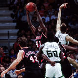 Glen Rice, Miami Heat Stock Images