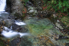 Glen River Swirls dans une piscine verte en Irlande du Nord Photo libre de droits