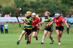 Free Glen Rovers Vs Seandún Camogie Challenge Match During Pre-season And After The Return From Lockdown Stock Images - 189414494