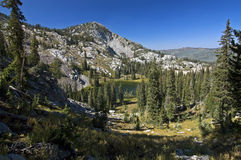 Glen in Wasatch Mountains royalty free stock photography