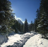 Glen by winter Royalty Free Stock Photos