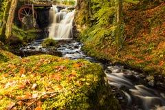 Glenariff jest doliną okręg administracyjny Antrim, Północnym - Ireland fotografia stock