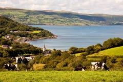Glenarm coast Stock Image