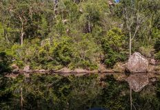 Glenbrook Reflections. Reflections off the still water in the Blue Mountains National Park Stock Photos