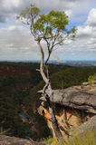 Glenbrookkloof Australië Royalty-vrije Stock Afbeeldingen