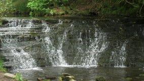 Glencar瀑布在爱尔兰 股票录像